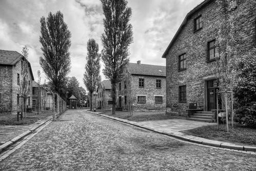 Blocks at Auschwitz