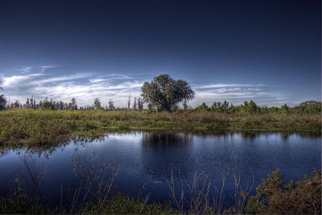 Blue Lagoon... sorta.