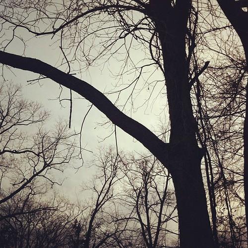 Dark + gloomy...#yoursky #janphotoaday #day8