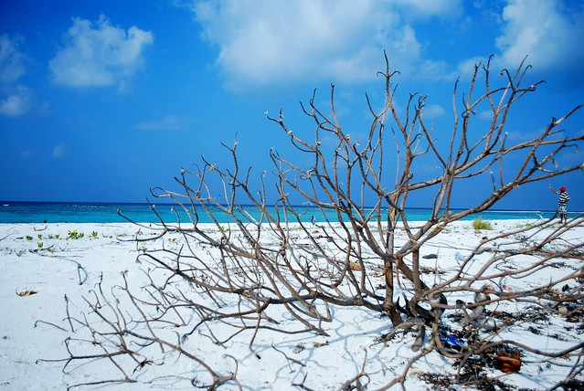 Sand bank (Maldives)