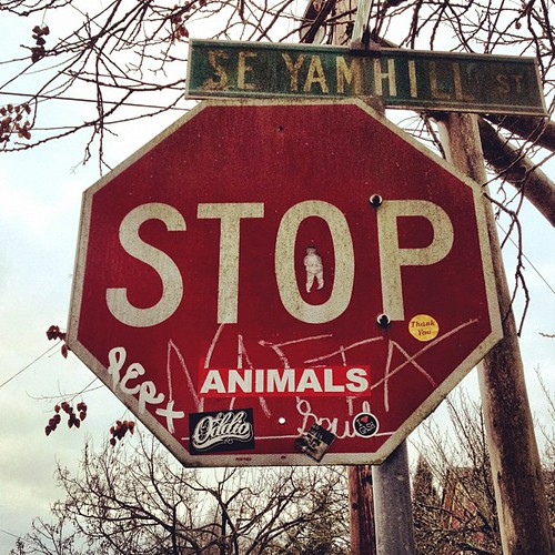 A10 is for (stop) animals #365