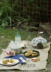 australia day picnic