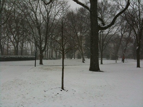 On campus, as the snow began falling