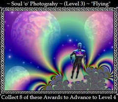 Level 3 Award ~ Flying/
