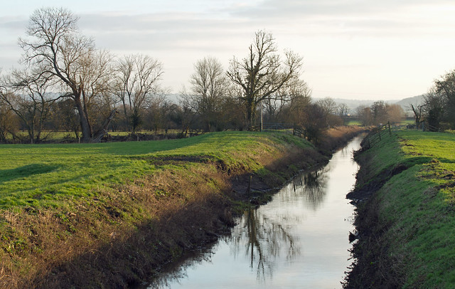 The Division Rhyne, Somerset Levels