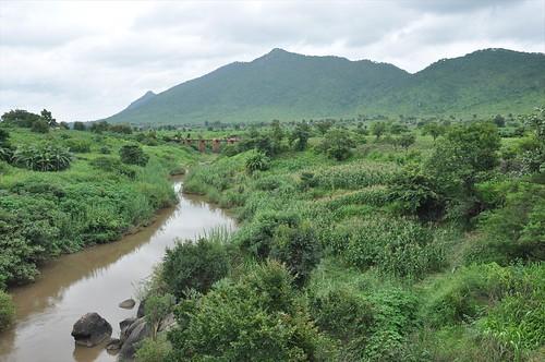 Green green Malawi
