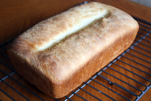 basic white bread.