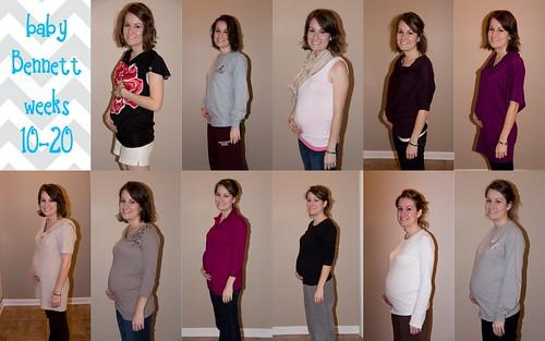 10-20 weeks