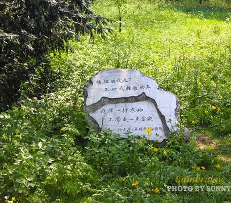 徐志摩之石