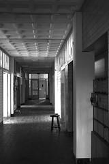 Creepy corridor