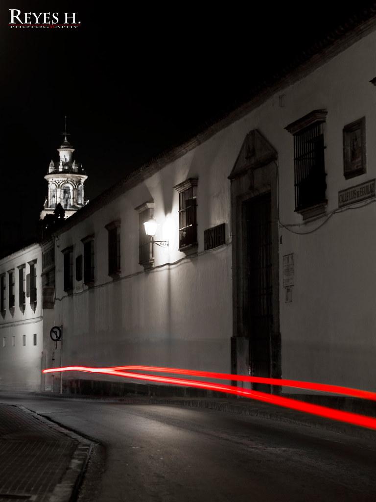 Desafio Doñana - Movimiento