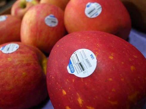 美國富士蘋果,4131,4129