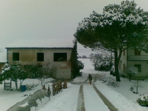 Nevicata 2012,meteomike