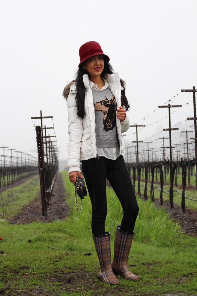 In the Rain 4