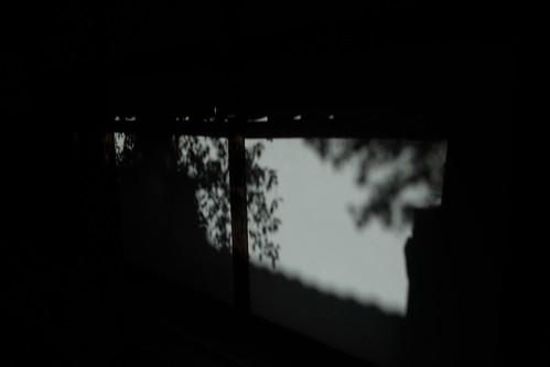 京都をめぐる冒険 青蓮院2