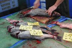 Fischmarkt (Fish Market)