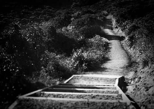 Moa point Wellington (Nex-5c Nikon 28mm f2.8 ais)
