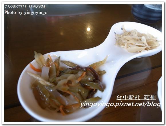 台中新社_菇神20111126_R0044218