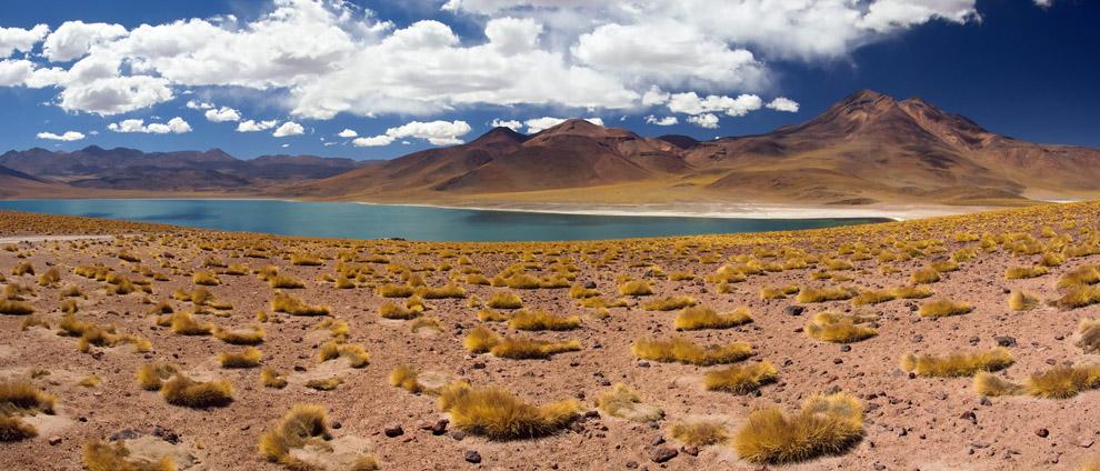 Rodeada de cumbres volcánicas, y a más de 4.300 metros de altitud, nos encontramos con esta atractiva laguna altiplánica de intenso color esmeralda. Chile, Reserva Nacional de los Flamengos (Guillermo Morales)