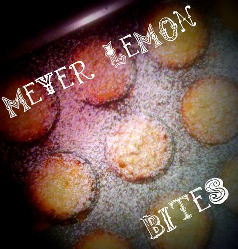 meyer lemon bites
