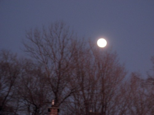 Moon Rise by susanvg
