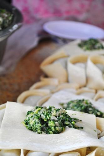 wrap your dumpling