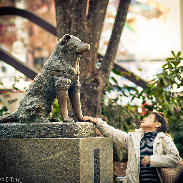 Hachiko Statue (Shibuya)  Those who lived during the 1930s …  Flickr - Phot...