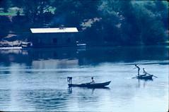 C131_Egypt_1983 Fishing on the NIle (411 of 560)