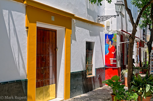 flamenca mural