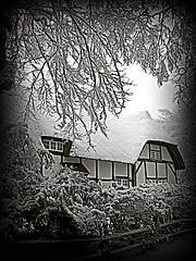 Cywydd to the Snow