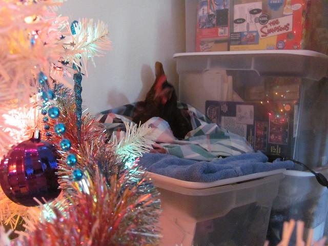 Henrietta Christmas Nest