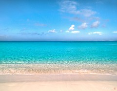 Paradise ⓒ