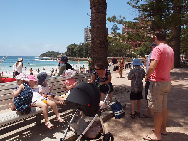 fish and chips in manly