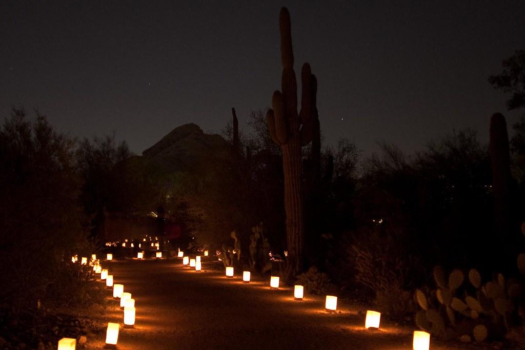 Phoenix Botanical Gardens Luminarias Far Out City Flickr