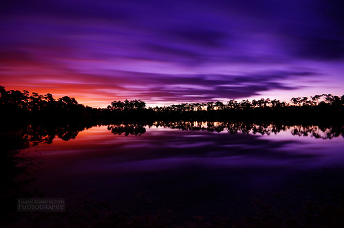 Pre-Dawn Magic at Pine Glades Lake [Explored]