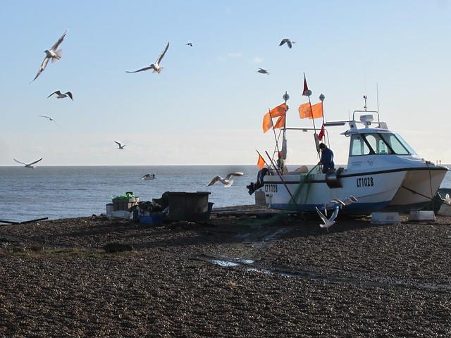 Aldeburgh Jan 2012 (7)
