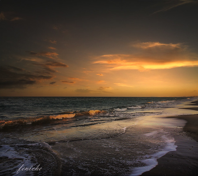 playa saler  valencia