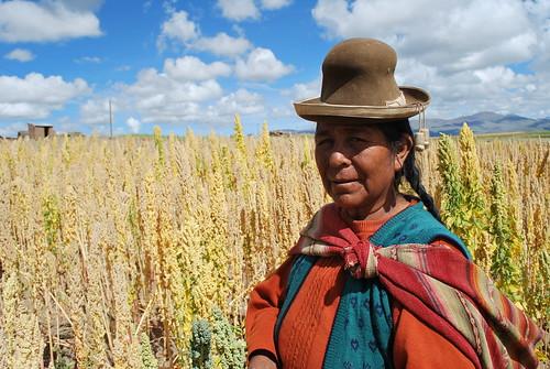 Bolivian farmer in her quinoa field - Neglected and Underutilized species