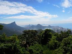 Rio de Janeiro, shot from 'Tijuca Forest'