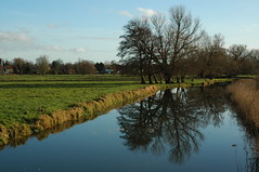 On a day trip to Diss, Norfolk