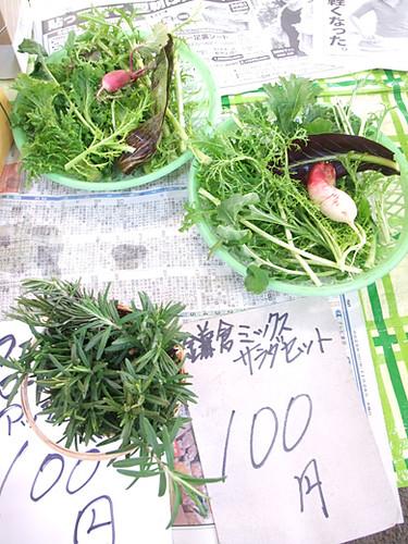 kamakura market 1