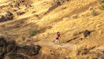 10 km – 8 týdenní trénink pro pokročilé / Hal Higdon