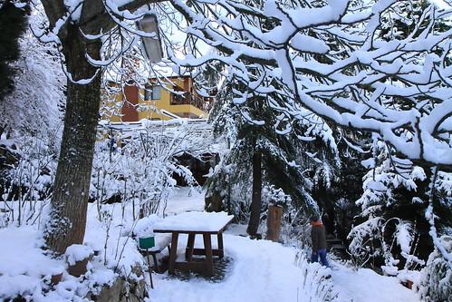 Zelis Ciftligi Winter