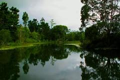 Australia 2011 - Queensland