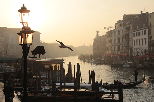 Venice canal & gondole from Rialto bridge