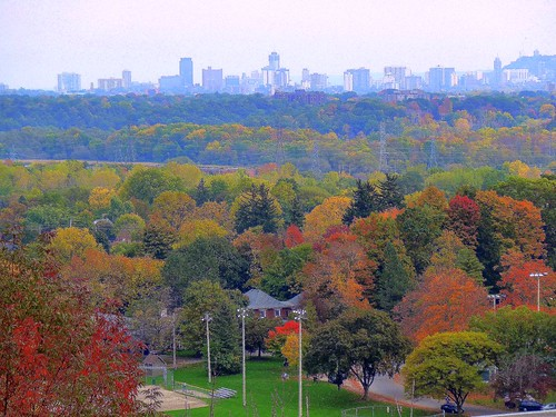 Hamilton, Ontario viewed from the Niagara Escarpment (by: Tom Flemming, creative commons license)