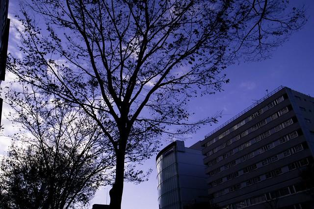 2012-01-28の空