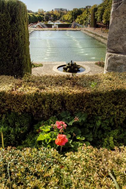 Alc zar gardens c rdoba jard nes del alc zar flickr for Jardines cordoba
