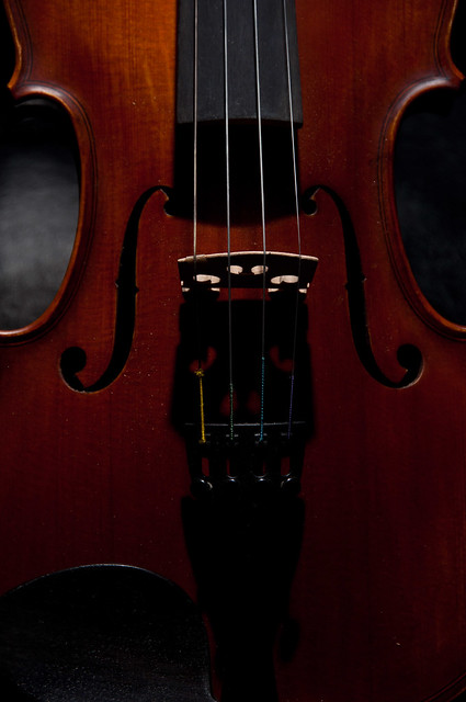 Violin lr 3 of 3