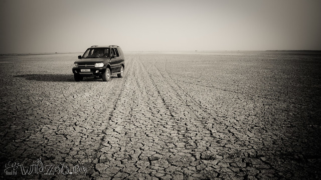 The Beast on the Rann Highway